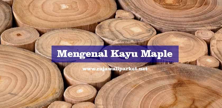 kayu maple